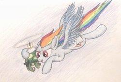 Size: 1088x734 | Tagged: safe, artist:thefriendlyelephant, rainbow dash, tank, pegasus, pony, tortoise, duo, flying, goggles, propeller, traditional art, windswept mane, wings