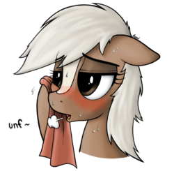 Size: 1800x1767 | Tagged: safe, artist:anearbyanimal, earth pony, pony, bedroom eyes, blushing, crossover, dialogue, epona, female, mare, messy mane, open mouth, panting, ponified, reaction image, signature, simple background, smiling, solo, sweat, sweating towel guy, the legend of zelda, towel, transparent background, unf