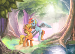 Size: 4000x2894   Tagged: safe, artist:mrs1989, applejack, rainbow dash, earth pony, pegasus, pony, appledash, complex background, cowboy hat, daytime, digital art, eyelashes, female, flying, foliage, forest, grass, hat, hoof on chest, hoof on neck, lesbian, looking at each other, looking down, looking up, mare, midair, multicolored hair, multicolored mane, outdoors, painting, raised hoof, roots, scenery, scenery porn, shipping, smiling, spread wings, standing, sunlight, tree, water, wings