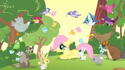 Size: 1280x720 | Tagged: safe, screencap, fluttershy, beaver, bird, blue jay, butterfly, duck, mallard, mouse, pegasus, pony, rabbit, weasel, the cutie mark chronicles, chickadee (bird), cute, filly, filly fluttershy, male, shyabetes, songbird