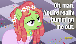 Size: 900x530 | Tagged: caption, clothes, confetti, discord, discovery family logo, dress, earth pony, edit, edited screencap, female, floral head wreath, flower, flower in hair, hippy, image macro, jewelry, make new friends but keep discord, male, mare, meme, necklace, open mouth, pony, roasted, safe, screencap, solo, text, tree hugger