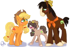 Size: 1024x683 | Tagged: safe, artist:mc10215, applejack, trouble shoes, oc, unnamed oc, earth pony, pony, appleoosa's most wanted, blaze (coat marking), family, female, hat, male, mare, offspring, parent:applejack, parent:troubleshoes clyde, parents:troublejack, shipping, simple background, stallion, straight, transparent background, trio, troublejack