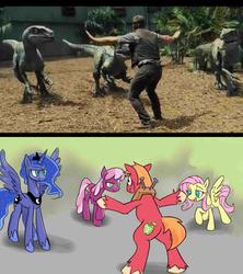 Size: 1280x1440 | Tagged: safe, artist:hentman, big macintosh, cheerilee, fluttershy, princess luna, alicorn, dinosaur, earth pony, human, pegasus, pony, reptile, velociraptor, bedroom eyes, big macintosh gets all the mares, bipedal, blue (raptor), butt, charlie, cheerimac, chris pratt, delta, drool, estrus, eyes on the prize, female, fluttermac, funny, irl, irl human, jurassic world, lunamac, male, mare, owen grady, parody, photo, plot, prattkeeping, raised eyebrow, raised hoof, scared, shipping, smiling, spread wings, straight, wavy mouth, wide eyes, wingboner