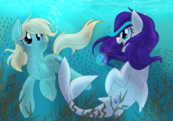 Size: 2000x1400 | Tagged: safe, artist:itstaylor-made, oc, oc only, oc:sea charm, oc:stream skimmer, merpony, freckles, puffy cheeks, underwater