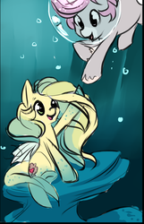 Size: 673x1043 | Tagged: safe, artist:starshinebeast, oc, oc only, oc:intrepid charm, oc:ocean pixel, aquapony, pony, unicorn, cute, female, male, seapegasus, straight, trail as a pony, underwater