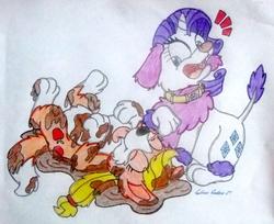 Size: 1356x1104 | Tagged: safe, artist:silversimba01, applejack, rarity, dog, earth pony, pony, poodle, unicorn, appledog, border collie, dogified, fanart, female, mare, raridog, species swap, traditional art