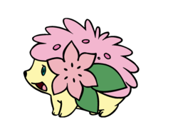 Size: 1382x984 | Tagged: female, fluttershy, hedgehog, land forme, open mouth, pokefied, pokémon, safe, shaymin, simple background, solo, species swap, white background