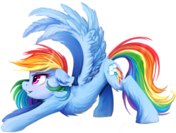 Size: 2000x1500 | Tagged: safe, artist:meotashie, rainbow dash, pegasus, pony, backwards cutie mark, blushing, chest fluff, female, fluffy, iwtcird, mare, simple background, smiling, solo, spread wings, stretching, transparent background, wings
