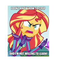 Size: 700x700 | Tagged: safe, edit, edited screencap, screencap, sunset shimmer, equestria girls, friendship games, angry, bad cropping, caption, image macro, meme, solo, sunset is not willing to learn