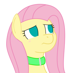 Size: 650x650 | Tagged: safe, artist:redintravenous, artist:scriptkitty, fluttershy, blushing, bust, collar, empty eyes, female, looking up, no catchlights, no pupils, simple background, solo, transparent background