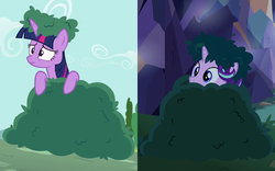 Size: 1012x633   Tagged: safe, screencap, starlight glimmer, twilight sparkle, alicorn, pony, no second prances, to where and back again, bush, bushanka, bushicorn, comparison, cropped, frown, leaning, peeking, soon, twilight bushel, twilight sparkle (alicorn), wide eyes