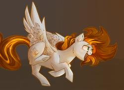 Size: 2431x1778 | Tagged: safe, artist:segraece, oc, oc only, oc:golden rain, pegasus, pony, flying, solo