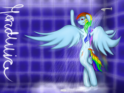 Size: 4000x3000 | Tagged: safe, artist:xhardwirex, rainbow dash, pony, bipedal, bipedal leaning, female, leaning, shower, solo, wet mane