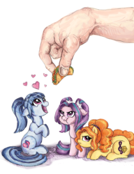 Size: 1000x1300   Tagged: safe, artist:buttersprinkle, adagio dazzle, aria blaze, sonata dusk, human, pony, adoragio, ariabetes, behaving like a dog, buttersprinkle is trying to murder us, cute, eyes on the prize, feeding, floppy ears, food, grumpy, hand, heart, looking up, micro, ponified, prone, puffy cheeks, size difference, sonatabetes, sonataco, taco, taco tuesday, the dazzlings, tiny, tiny ponies