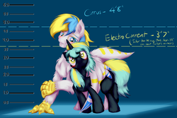 Size: 3600x2400 | Tagged: safe, artist:frist44, oc, oc only, oc:cirrus sky, oc:electro current, hippogriff, original species, blushing, cirrent, height difference, height scale, hug, shipping, size difference, talons, winghug