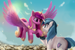Size: 2700x1800 | Tagged: dead source, safe, artist:noctilucent-arts, princess cadance, shining armor, crepuscular rays, cute, cutedance, flower, flying, male, plot, shining adorable, shiningcadance, shipping, straight, wallpaper