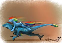 Size: 1328x939   Tagged: safe, artist:sakuracheetah, rainbow dash, dinosaur, pegasus, pony, velociraptor, brown background, duo, female, mare, ponies riding dinosaurs, riding, self ponidox, simple background, species swap, velocirainbow