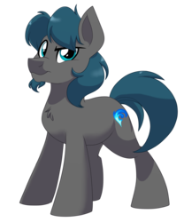 Size: 1500x1800 | Tagged: safe, artist:itstaylor-made, oc, oc only, earth pony, pony, male, simple background, solo, stallion, transparent background