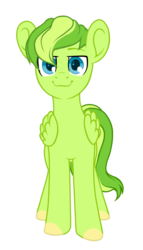 Size: 856x1500 | Tagged: safe, artist:kate littlewing, oc, oc only, oc:lime zest, pegasus, pony, 2017 community collab, derpibooru community collaboration, looking at you, male, simple background, smiling, solo, transparent background