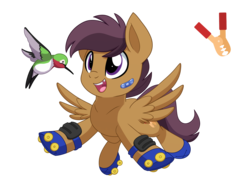 Size: 2000x1500 | Tagged: safe, artist:itstaylor-made, oc, oc only, oc:jump start, oc:zipper, bird, hummingbird, pegasus, pony, colt, duo, male, offspring, parent:rumble, parent:scootaloo, parents:rumbloo, pet, pet oc, roller skates, simple background, tooth gap, transparent background
