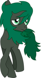 Size: 552x1031 | Tagged: safe, artist:minus, derpibooru exclusive, oc, oc only, oc:minus, earth pony, pony, 2017 community collab, derpibooru community collaboration, frown, green eyes, male, raised hoof, sad, simple background, solo, transparent background, vector