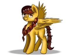 Size: 1280x960   Tagged: safe, artist:rainbowstrage, oc, oc only, pegasus, pony, simple background, solo, white background
