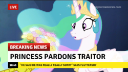 Size: 640x360 | Tagged: breaking news, break your own news, discord, news, princess celestia, safe
