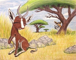 Size: 1004x796   Tagged: safe, artist:thefriendlyelephant, oc, oc only, oc:kweli masozi, oc:mmiri, oc:nuk, antelope, bontebok, gerenuk, springbok, acacia tree, africa, animal in mlp form, horns, long muzzle, rock, savanna, singing, tall grass, traditional art, tree, trio