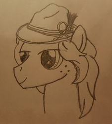 Size: 866x960   Tagged: safe, artist:hickory17, oc, oc only, oc:hickory switch, earth pony, pony, hat, monochrome, solo