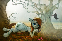 Size: 4500x3000 | Tagged: safe, artist:vitaj, oc, oc only, oc:kouprisa, earth pony, pony, zebra, baobab, black flag, earth, field, flag, flower, light, looking at you, lying, male, rain, solo, tree