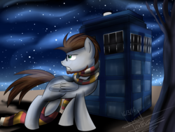 Size: 1599x1200 | Tagged: safe, artist:scarlett-letter, pegasus, pony, beard, clothes, commission, doctor who, glasses, green eyes, night, scarf, stars, tardis, three