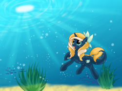 Size: 4000x3000 | Tagged: safe, artist:vinylbecks, oc, oc only, oc:tidal charm, aquapony, 4k tidal contest entries, female, seaunicorn, solo, underwater, water