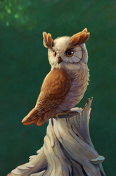 Size: 792x1200 | Tagged: safe, artist:maggwai, owlowiscious, awwlowiscious, beautiful, cute, detailed, eyebrows, male, realistic, solo, tree stump