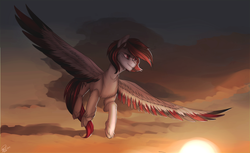 Size: 1024x626 | Tagged: artist:orfartina, cloud, colored wings, colored wingtips, flying, large wings, multicolored wings, oc, oc only, pegasus, pony, safe, sky, solo, spread wings, sunset, unshorn fetlocks, wings