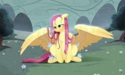 Size: 1550x930 | Tagged: safe, artist:aidapone, fluttershy, butterfly, pegasus, pony, female, mare, protecting, rain, sitting, smiling, solo, spread wings, wet mane, wing shelter