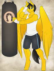 Size: 600x788 | Tagged: safe, artist:spazzykoneko, oc, oc only, oc:steelshine, anthro, pegasus, unguligrade anthro, athletic tape, clothes, hand wraps, male, punching bag, scar, shirt, shorts, taped fists, workout