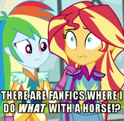 Size: 350x340 | Tagged: safe, screencap, rainbow dash, sunset shimmer, equestria girls, friendship games, homedick shimmer, image macro, implied bestiality, meme
