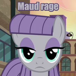 Size: 480x480 | Tagged: safe, edit, edited screencap, screencap, maud pie, earth pony, pony, the gift of the maud pie, caption, female, frown, image macro, looking at you, mare, maud being maud, meme, rage, reaction image, solo, the fire in her eyes, tranquil fury