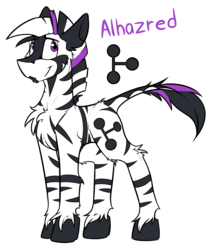 Size: 2715x3147 | Tagged: artist:ralek, explicit source, male, oc, oc:alhazred, oc only, reference sheet, safe, simple background, solo, stallion, text, white background, zebra
