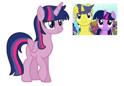Size: 886x616   Tagged: safe, artist:estefania200, comet tail, twilight sparkle, oc, unnamed oc, alicorn, pony, cometlight, female, male, offspring, parent:comet tail, parent:twilight sparkle, parents:cometlight, shipping, straight, twilight sparkle (alicorn)