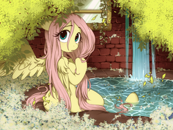 Size: 1024x768 | Tagged: safe, artist:umeguru, fluttershy, pegasus, anthro, semi-anthro, unguligrade anthro, arm hooves, breasts, cute, female, looking at you, looking back, looking back at you, looking over shoulder, mare, shoulder fluff, shyabetes, solo, water, wet, wet mane