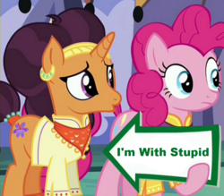 Size: 941x823 | Tagged: edit, edited screencap, i'm with stupid, meme, pinkie pie, pinkie pie's sign, safe, saffron masala, screencap, spice up your life