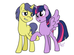 Size: 1024x768 | Tagged: safe, artist:siekit442, comet tail, twilight sparkle, alicorn, pony, blushing, cometlight, female, holding hands, male, open mouth, shipping, simple background, straight, transparent background, twilight sparkle (alicorn), vector