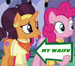 Size: 941x823 | Tagged: edit, edited screencap, female, implied shipping, lesbian, meme, pinkie pie, pinkie pie's sign, pun, safe, saffron masala, saffronpie, screencap, shipping, spice up your life, waifu