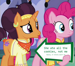 Size: 941x823 | Tagged: blatant lies, edit, edited screencap, meme, pinkie pie, pinkie pie's sign, safe, saffron masala, screencap, spice up your life