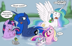 Size: 1275x825 | Tagged: safe, artist:silfoe, princess cadance, princess celestia, princess flurry heart, princess luna, twilight sparkle, alicorn, bird pone, duck, duck pony, fly, frog, mallard, pony, royal sketchbook, :i, alicorn pentarchy, aliduck, ask, behaving like a bird, behaving like a duck, behaving like a goose, buoyant, cute, cutedance, cutelestia, ducklestia, eyes closed, female, floating, floppy ears, flurrybetes, frown, glare, gooselestia, honk, laughing, licking, lunabetes, majestic as fuck, male, mare, missing accessory, mother and daughter, offended, open mouth, quack, royal sisters, smiling, spread wings, swandance, swanlestia, swanlight sparkle, swanluna, sweet dreams fuel, swimming, tongue out, tumblr, twiabetes, twilight duckle, twilight sparkle (alicorn), unamused, wall of tags, water, wide eyes