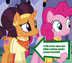 Size: 941x823 | Tagged: edit, edited screencap, meme, pinkie pie, pinkie pie's sign, safe, saffron masala, screencap, spice up your life