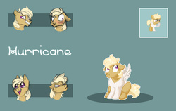 Size: 3537x2235 | Tagged: safe, artist:vindhov, oc, oc only, oc:hurricane, pegasus, pony, blank flank, colt, male, offspring, parent:pipsqueak, parent:scootaloo, parents:scootasqueak, simple background, solo, teal background