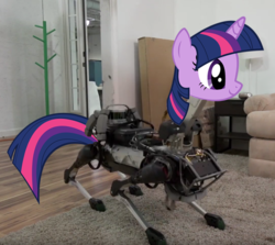 Size: 719x641 | Tagged: boston dynamics, edit, photo, robot, safe, twilight sparkle, wat, what has science done