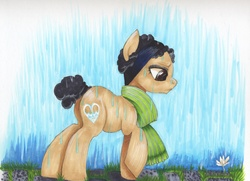 Size: 3473x2513 | Tagged: safe, artist:frozensoulpony, oc, oc only, oc:chilly earthbound, clothes, flower, scarf, solo, traditional art, waterfall